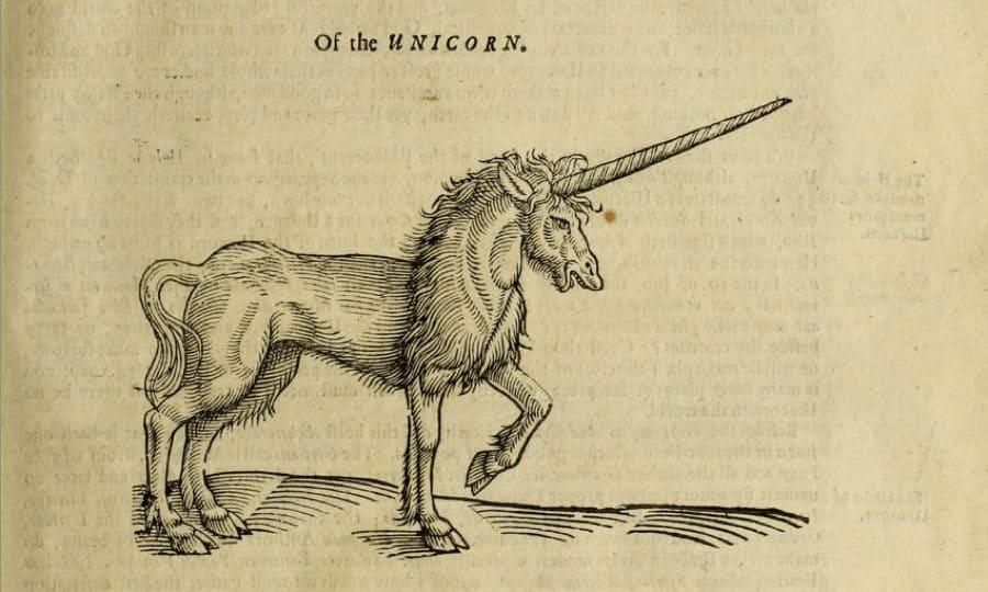 the unicorn in bible
