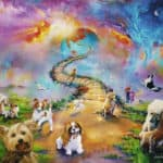 What is rainbow bridge for dogs?
